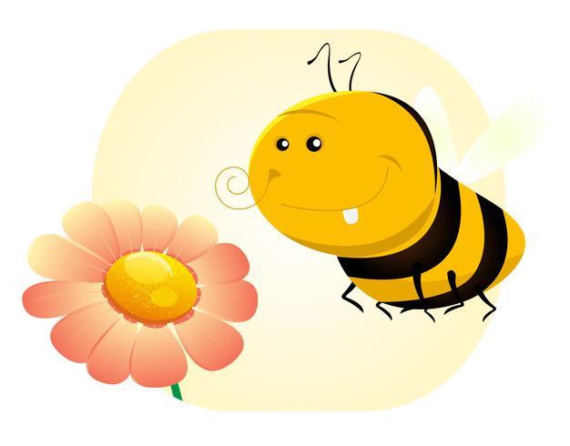 Frühlingsbiene vektor