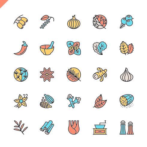 Flache Linie Gewürze, Gewürze und Kräuterikonen stellten für Website und bewegliche Site und apps ein. Umreißen Sie Ikonenentwurf. 48x48 Pixel Perfekt. Lineare Piktogrammpackung Vektor-illustration vektor
