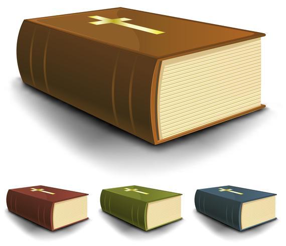 Große alte heilige Bibelbücher eingestellt vektor