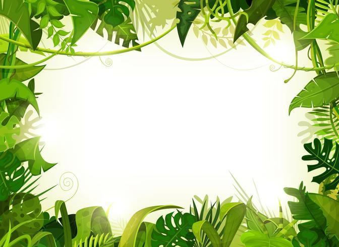 djungel tropiskt landskap bakgrund vektor