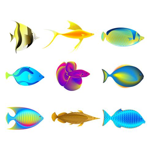 Färgglada fiskar vektor