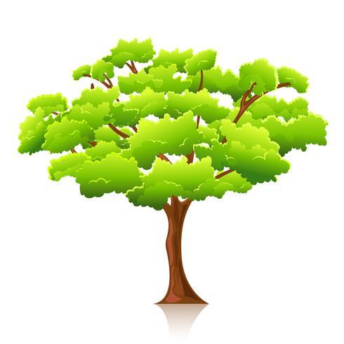 Stort träd vektor