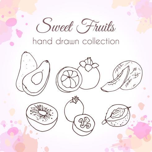Sats av handdragen färsk frukt med färgglada vattenfärgstänk vektor