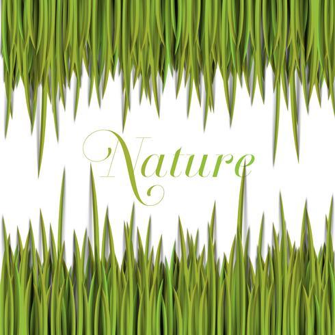 Naturgrön mall med vektorgräs. vektor