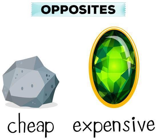 Motsatt ord för billigt och dyrt vektor