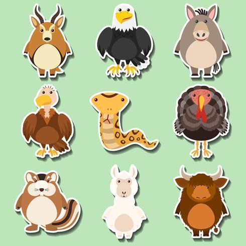 Klistermärke design med många djur på grön bakgrund vektor