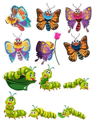 Rostor och fjärilar med färgglada vingar vektor