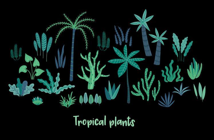 Vektor uppsättning abstrakta tropiska växter. Designelement