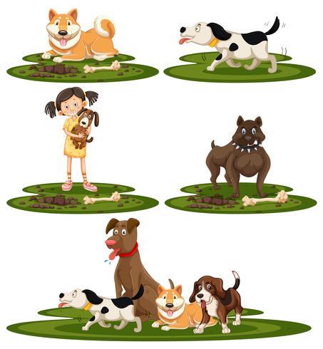 Eine Reihe von Hunderassen vektor