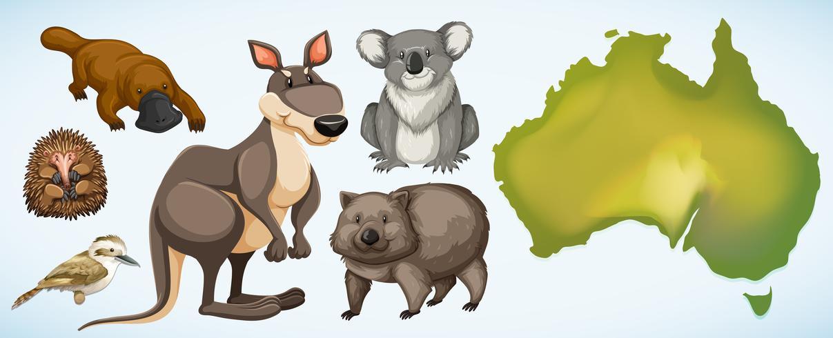 Verschiedene wilde Tiere in Australien vektor