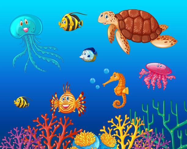 Seetiere, die unter dem Ozean schwimmen vektor