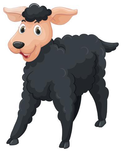 Schwarze Schafe mit glücklichem Gesicht vektor