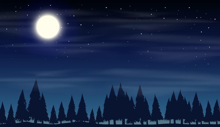Nattplats med siluettskog vektor