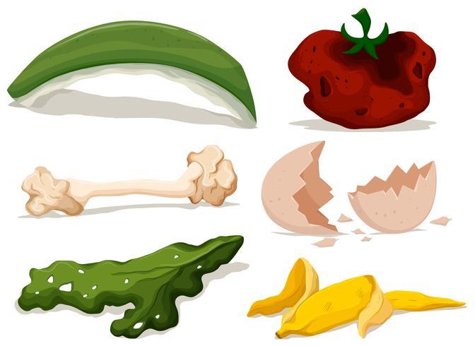 Olika typer av rått mat vektor
