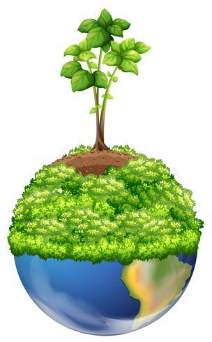Gröna växter på jorden vektor