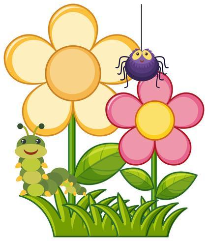 Spindel och larv i blomsterträdgård vektor