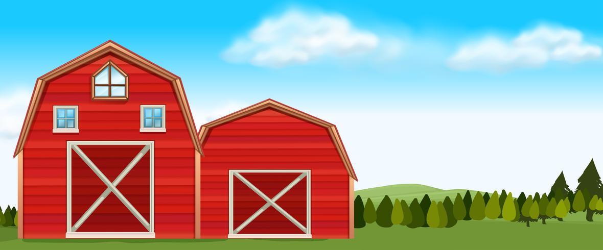 Bauernhofszene mit Scheunen auf dem Gebiet vektor