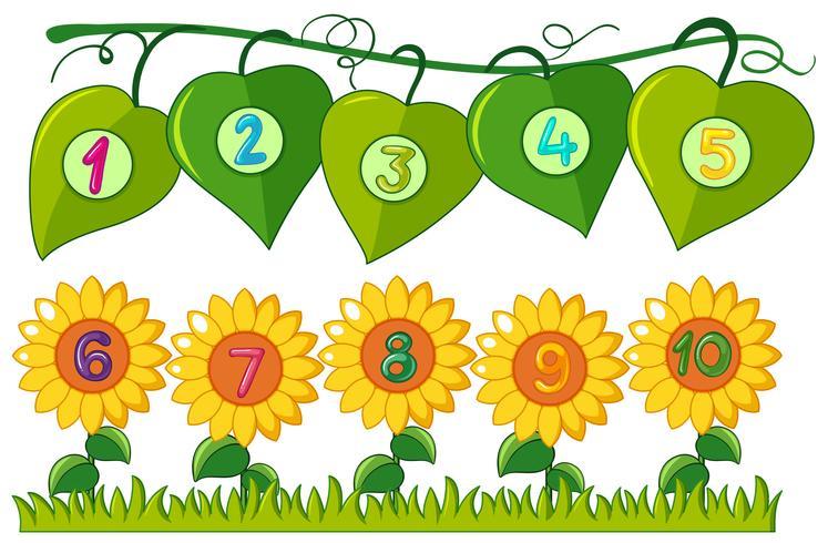 Nummer en till tio på löv och blommor vektor