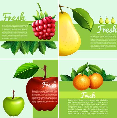 Infografisk design med färska frukter vektor