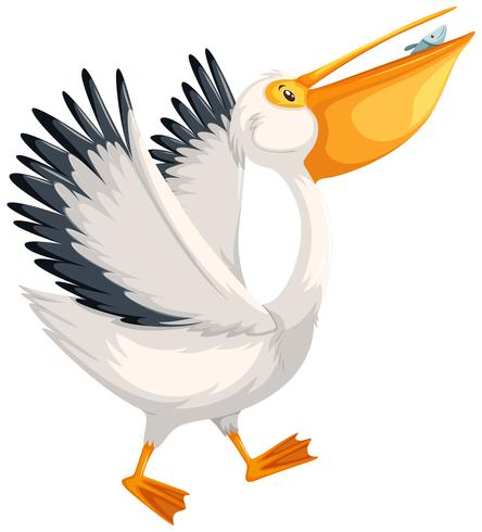 Ein Pelikan Charakter zu Fuß vektor