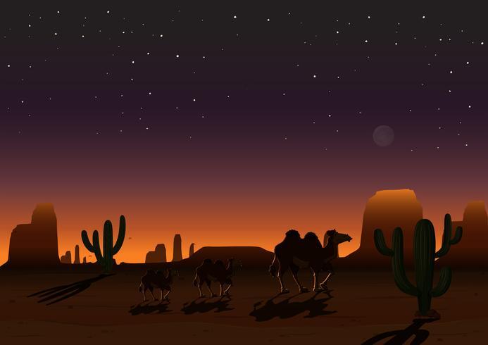 Ett ökenlandskap på natten vektor