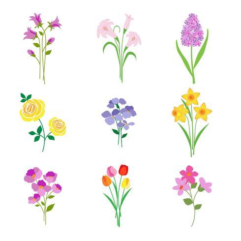 Hand gezeichnete botanische Blumen des Frühlinges vektor