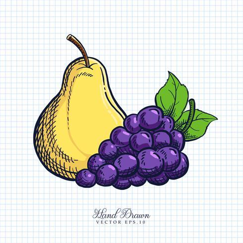 Handdragen Frukt & Grönsak Illustration vektor