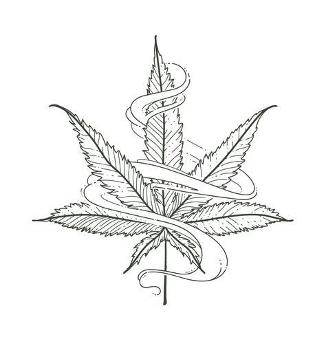 Vektor Marihuana-Blatt