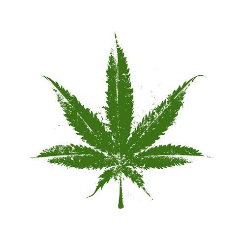 Marihuana Grunge Blatt vektor