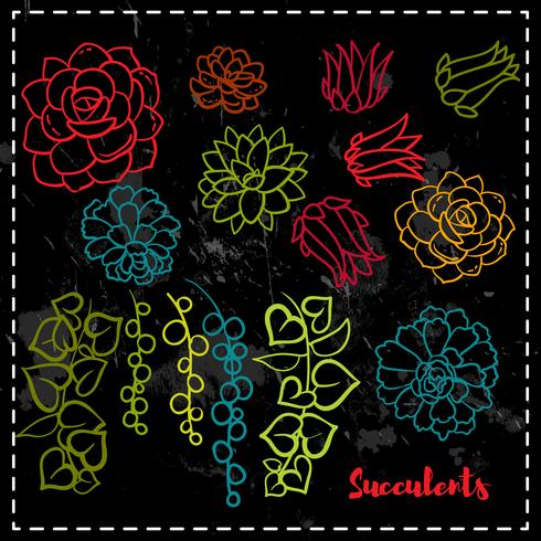 Succulents set i handen ritar stil. vektor