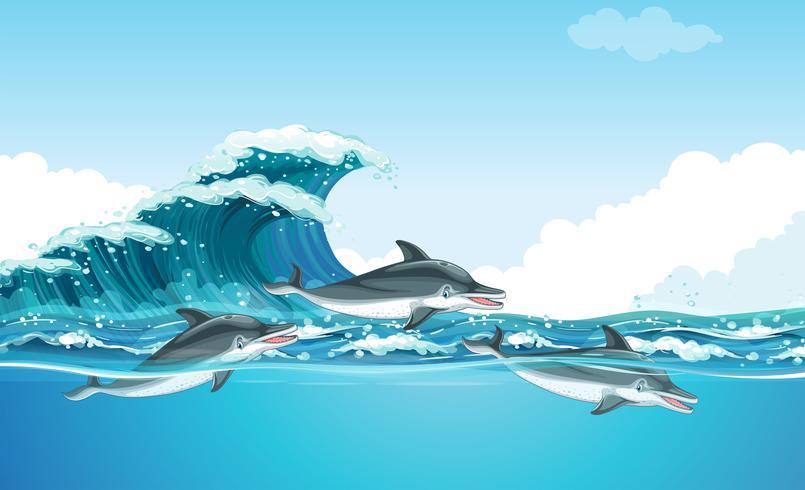 Delphine schwimmen unter dem Ozean vektor