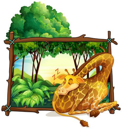 Träram med giraff i djungeln vektor