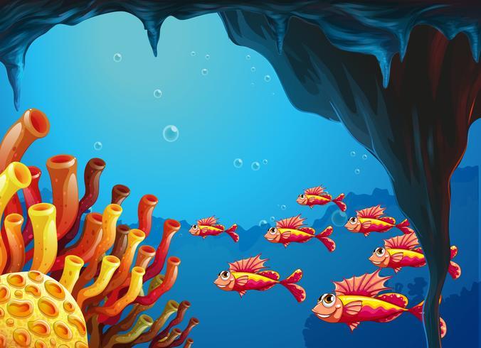 Eine Fischschule, die zu den Korallenriffen in der Höhle geht vektor