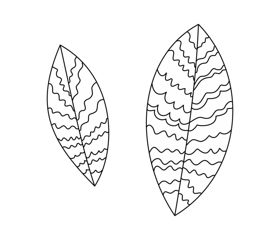 stilisierte Blattillustration durch dünne Linien. Blattzweigbaum, Busch. Pflanze - Malbuch im flachen Stil vektor