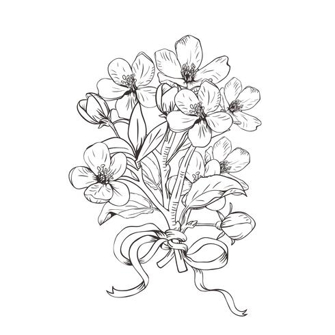 Blommande träd. Handgjorda botaniska blommar grenar bukett på vit bakgrund. Vektor illustration