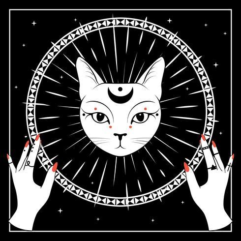Weißes Katzengesicht mit Mond auf nächtlichem Himmel mit dekorativem rundem Rahmen. Hände mit Ringen. vektor