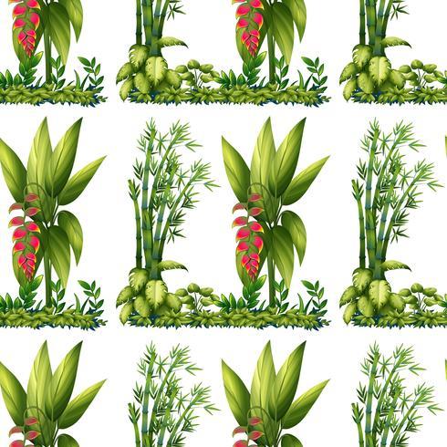 Nahtlose Pflanzen vektor