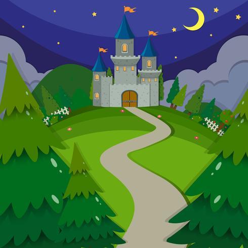 Burgtürme in der Nacht vektor