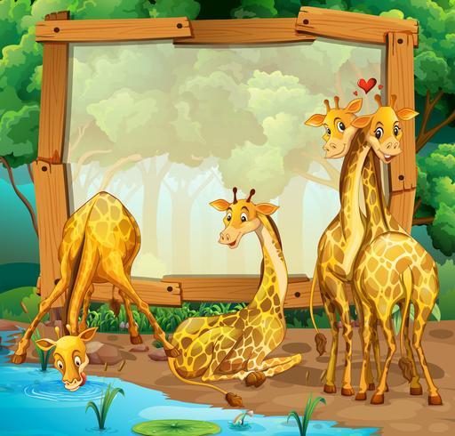 Rahmendesign mit Giraffen im Dschungel vektor