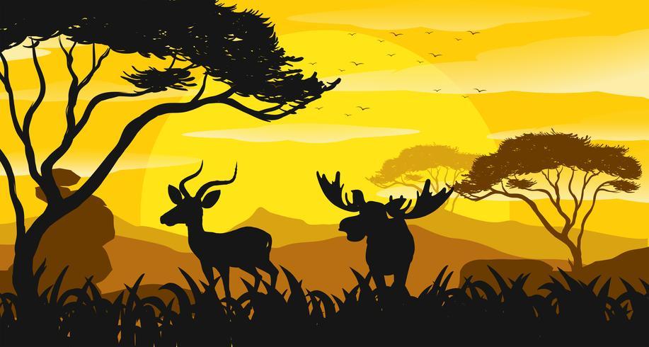 Silhuett scen med gazelle och älg vid solnedgången vektor