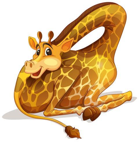 Nette Giraffe, die seinen Hals faltet vektor