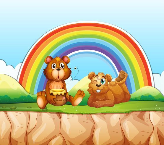 Bären und Regenbogen vektor