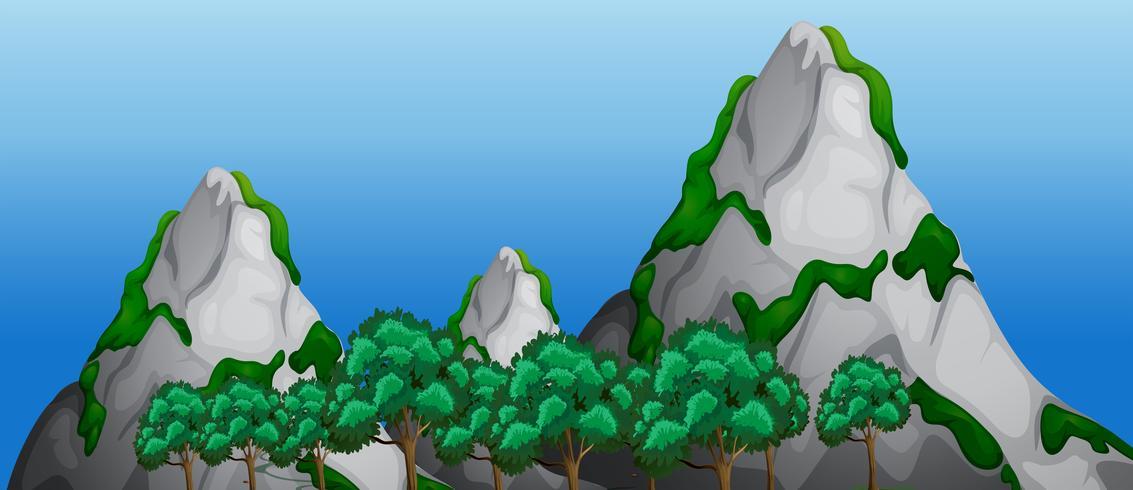 Ett natur bergslandskap vektor