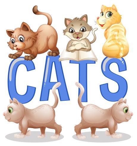 Teckensnittsdesign med ordkatter med många kattungar i bakgrunden vektor