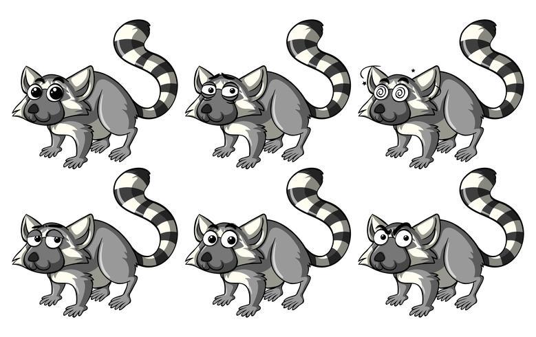 Lemur mit verschiedenen Emotionen vektor