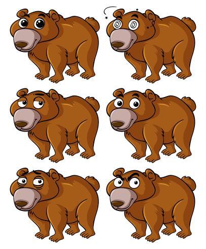 Bär mit verschiedenen Gesichtsausdrücken vektor