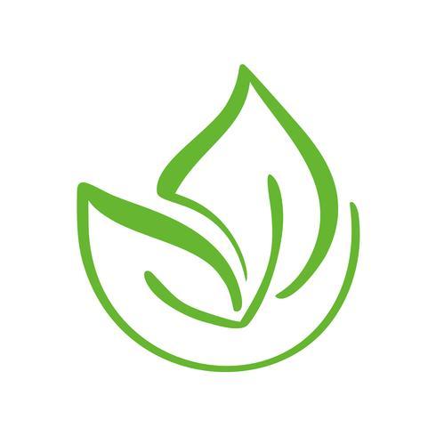 Logo av grönt blad av te. Ekologi naturelement vektor ikon symbol. Eco veganisk bio kalligrafi handritad illustration