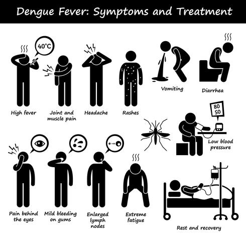 Dengue-Fieber-Symptome und Behandlung Aedes Moskito Strichmännchen Piktogramme Symbole. vektor