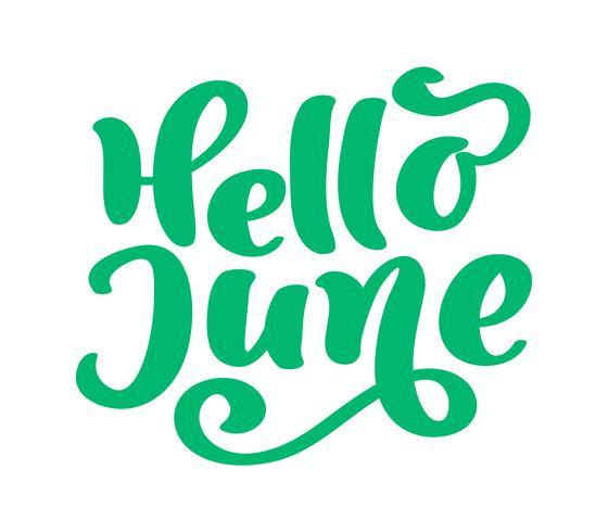 Hej juni bokstäver skriva vektortext. Sommar minimalistisk illustration. Isolerad kalligrafi fras på vit bakgrund vektor