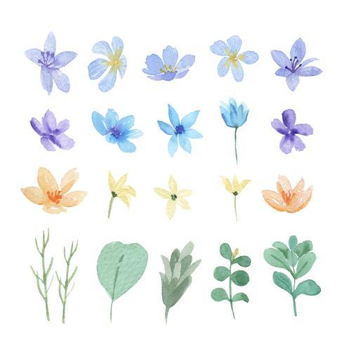 Blumen- und Blattaquarellelemente stellten handgemalte üppige Blumen ein. Illustration von stieg, Pfingstrose, wenig Blumenweinlese, lokalisiertes Aquarell. Entwerfen Sie Dekor für Einladungskarte, Hochzeit, Plakat, Banner. vektor